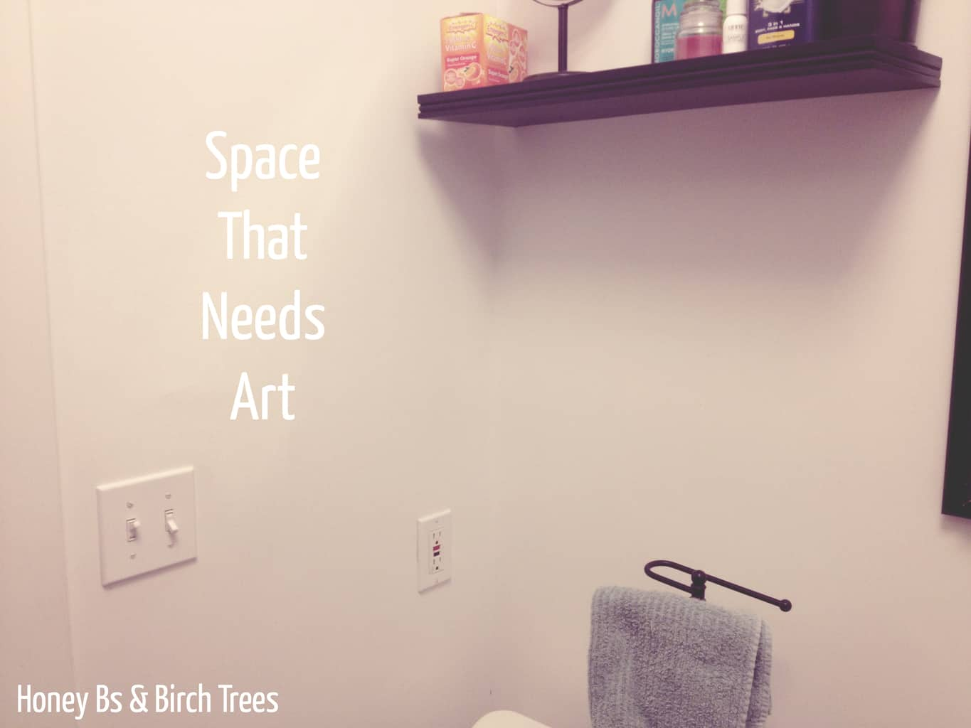 8 Great Free Printables for Your Adult Bathroom | Honey Bs and Birch Trees