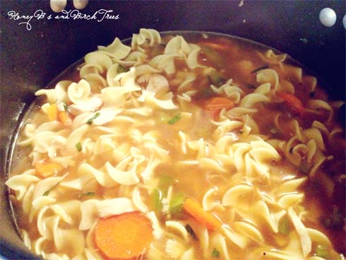 Spicy Rotisserie Chicken Noodle Soup | Honey Bs and Birch Trees