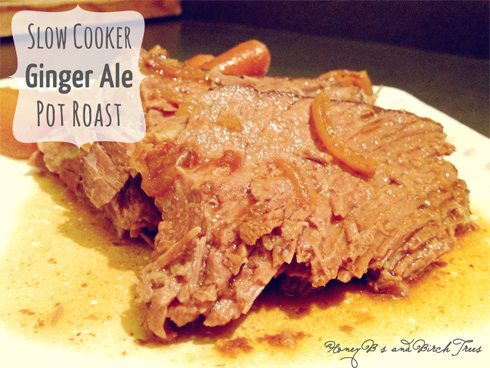 An easy slow cooker ginger ale pot roast recipe - it doesn't call for many ingredients but is packed full of big flavor! | www.honeyandbirch.com