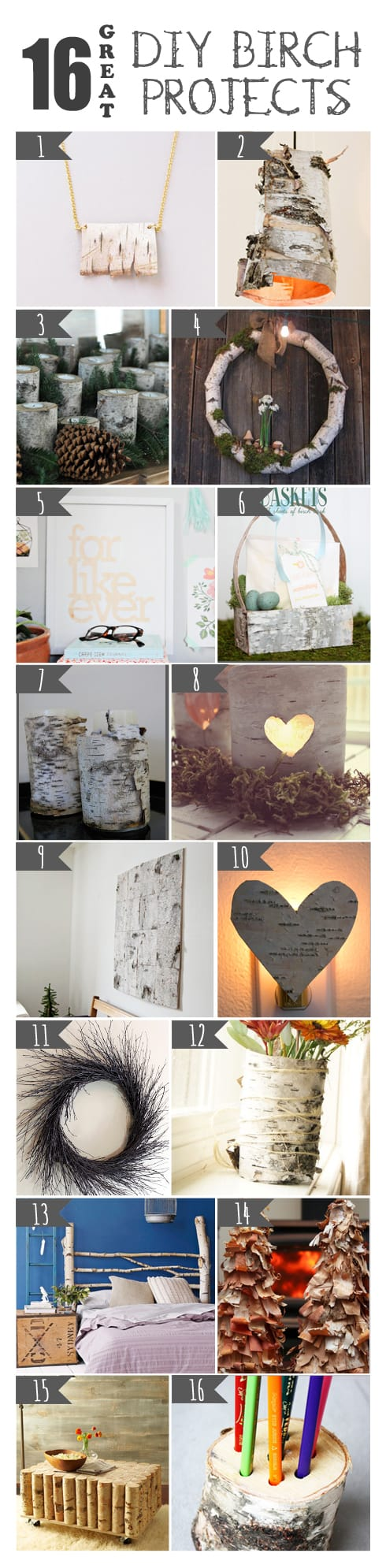 16 Great DIY Birch Projects
