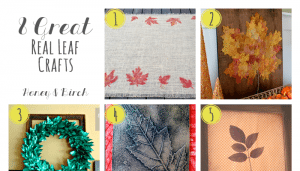 8 Great Fall Real Leaf Crafts