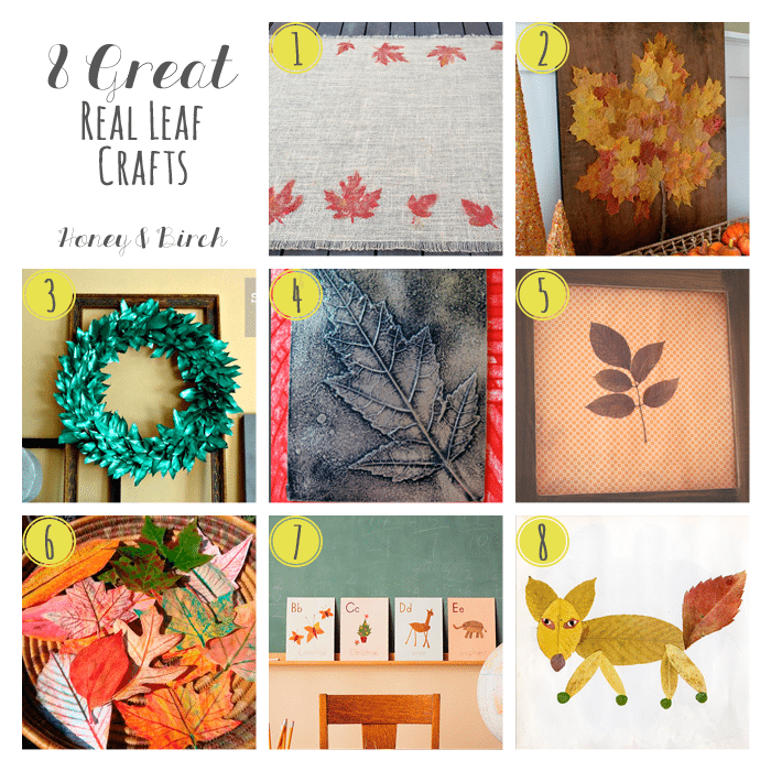 The tree's leaves are starting to change color and fall from the trees – now is the perfect time to start planning some fall crafts for those leaves.  Here are 8 great crafts for real fall leaves.