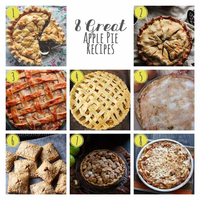 8 Great Apple Pie Recipes | www.honeyandbirch.com