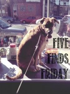 Five Finds Friday: 11.29.13