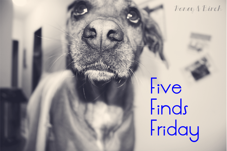 Five Finds Friday 11.08.2013