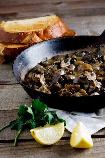 8 Great Mushroom Soup Recipes perfect for fall soup season! #soup | Honey and Birch