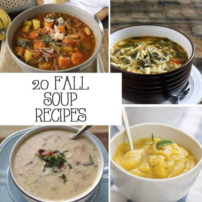 If you're looking for a warm up this autumn, try one of these fall soup recipes! | Honey and Birch