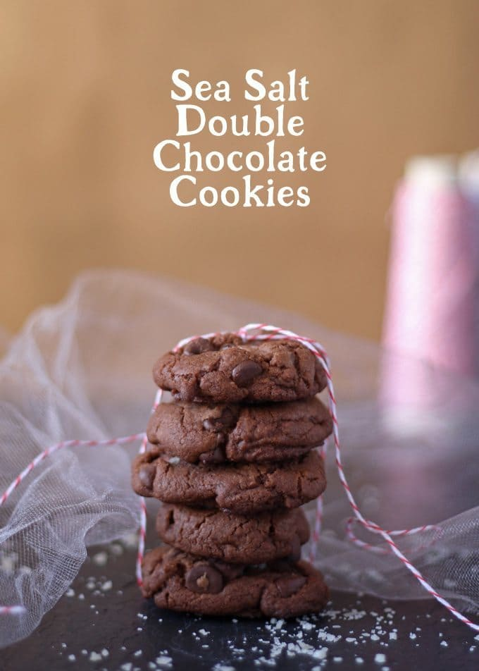 Sea Salt Double Chocolate Cookies | www.honeyandbirch.com | #fbcookieswap