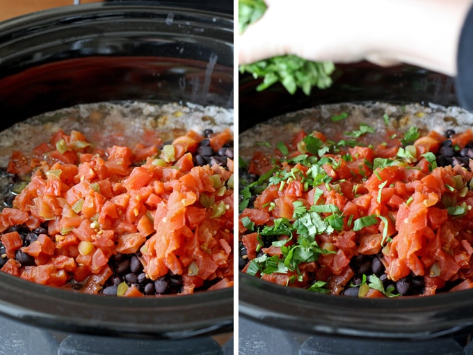 Slow Cooker Fiesta Chicken is crowd friendly and perfect for parties! Or, throw it in the crockpot in the morning and on the family dinner table at night. | honeyandbirch.com