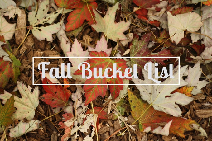 Fall Bucket List | honeyandbirch.com