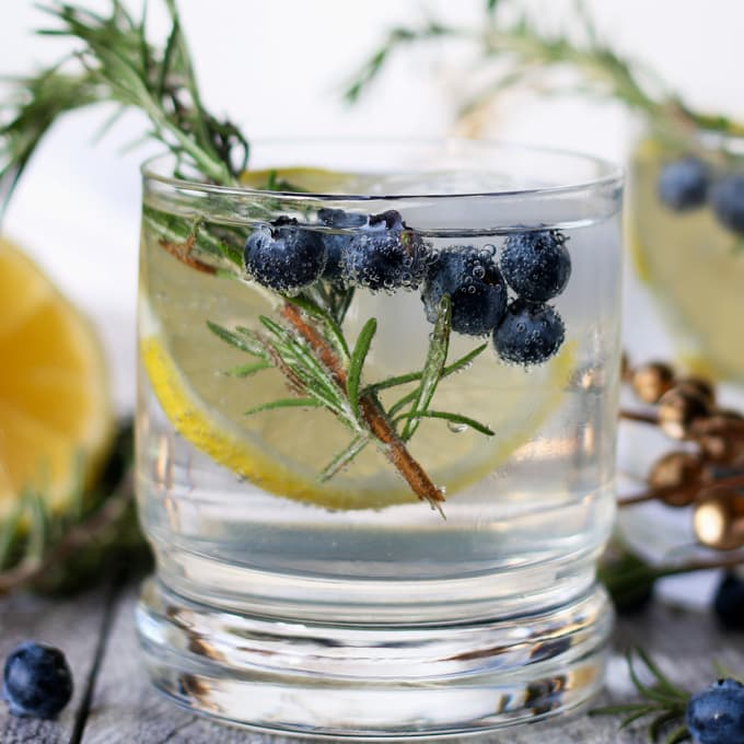 10 Remarkable Memorial Day Cocktails - Lemon Blueberry Vodka Spritzer