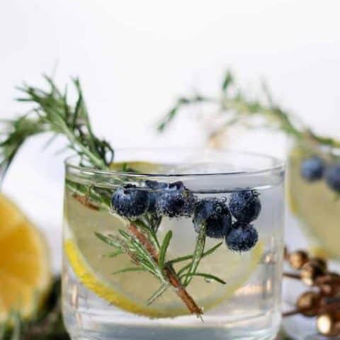 Lemon Blueberry Vodka Spritzer