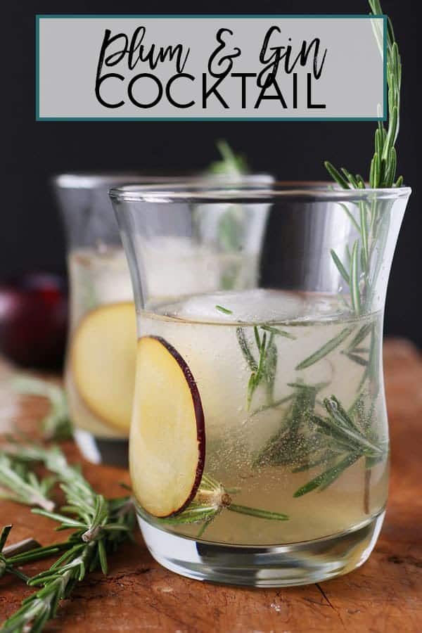 plum gin cocktail pinterest image