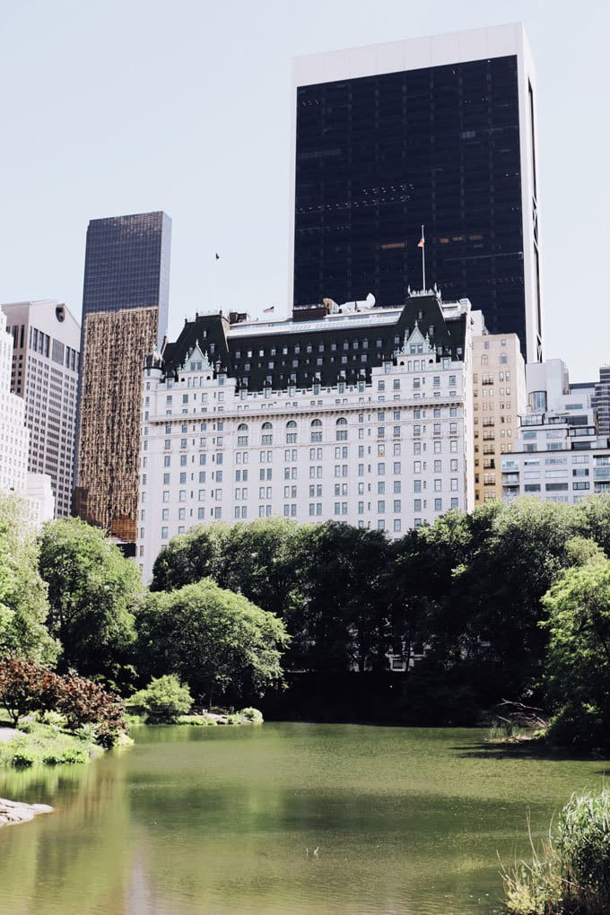 Central Park | Miele Culinary Adventure