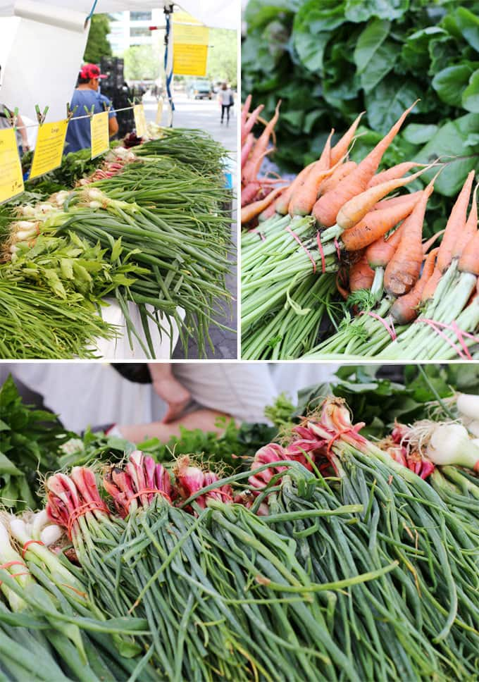 Union Square GreenMarket | Miele Culinary Adventure