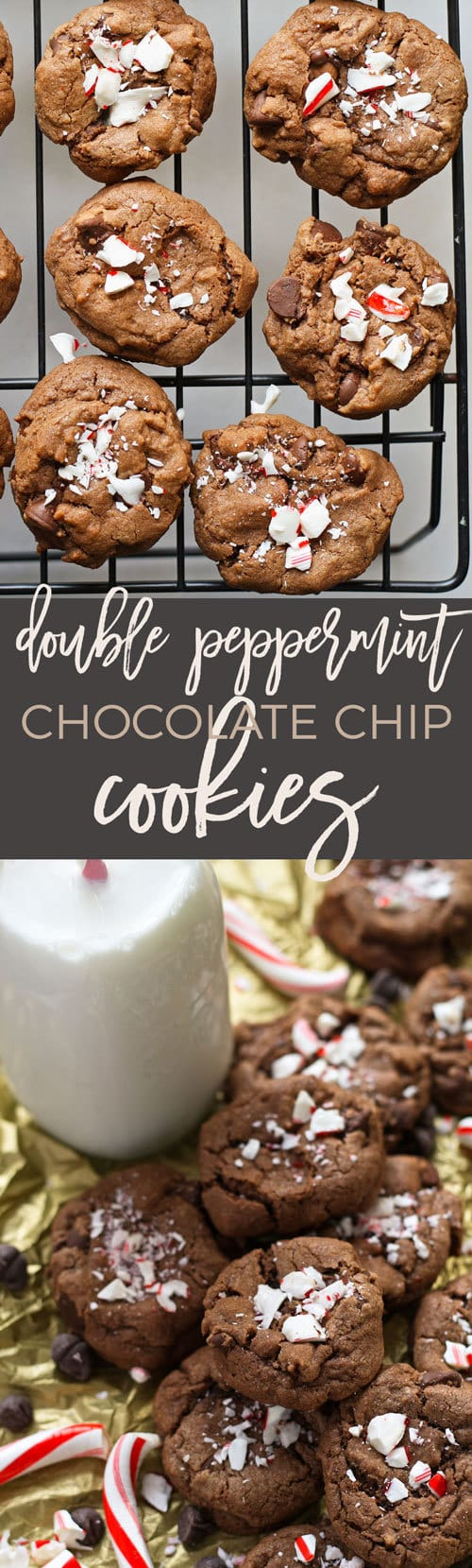 double peppermint chocolate chip cookies long pin
