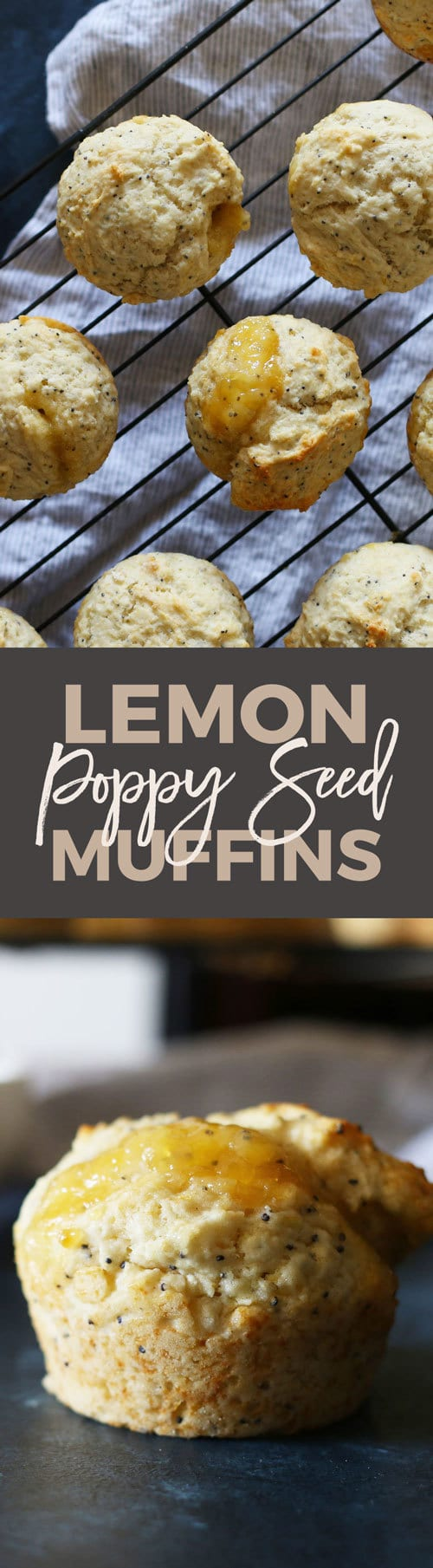 Lemon poppy seed muffins with a twist! These easy muffins are filled with lemon curd and are perfect for every day breakfasts or a fancy brunch menu.