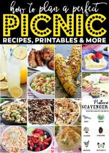 The Perfect Picnic Meal Plan