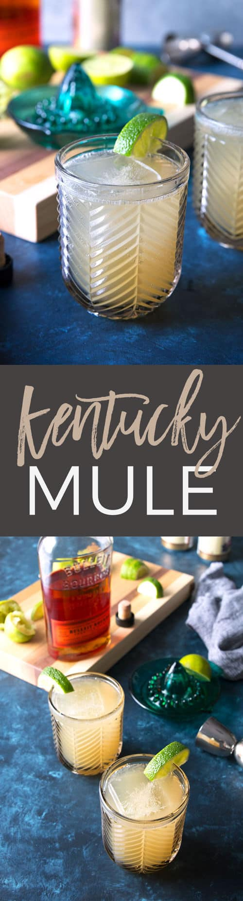 Kentucky Mule recipe pin