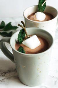 Boozy Mint Hot Chocolate