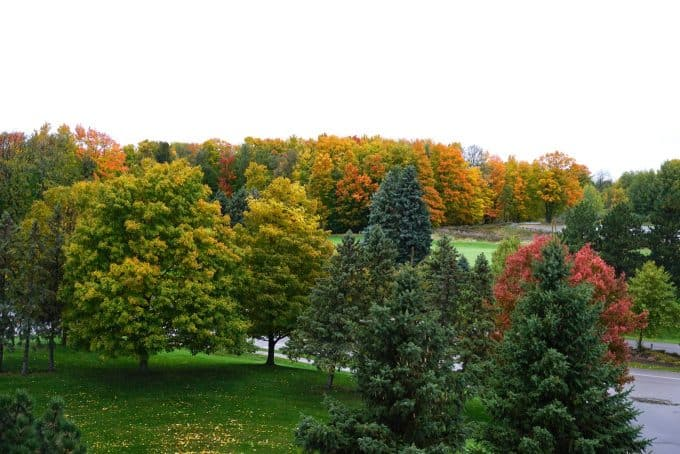 Traverse City in autumn