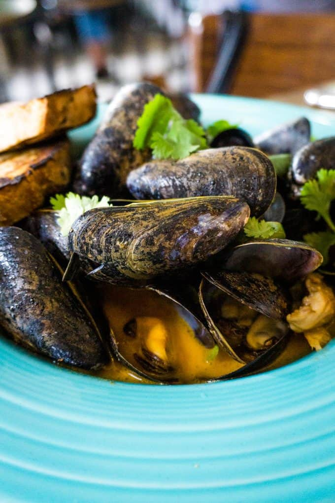 The Best Downtown Charleston Restaurants - The Darling Oyster Bar mussels